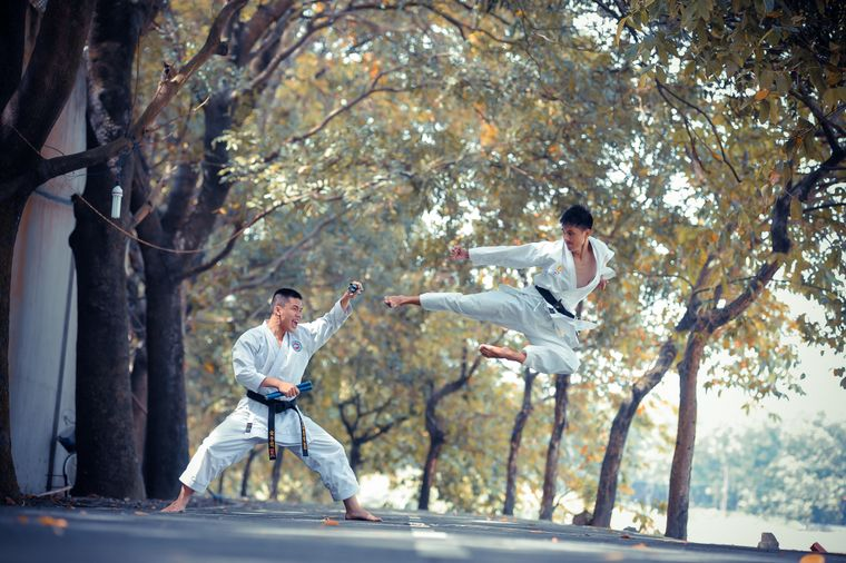 Karate lessons during quarantine